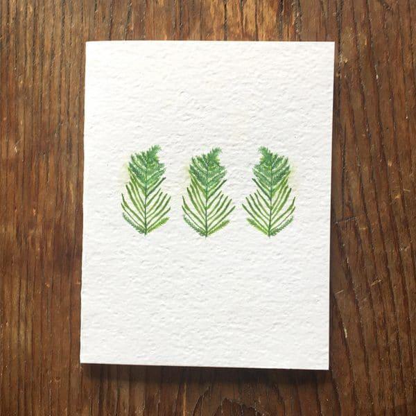 Three Ferns